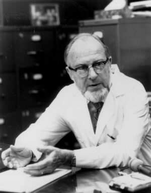 Professor James V. Veel was a pioneer in the field of human genetics.