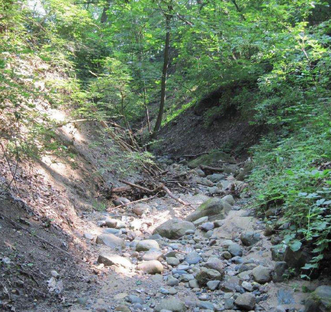 Erosion rocks & invasives in Glen
